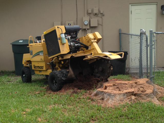 commercial stump removal