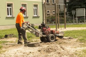 residential stump removal
